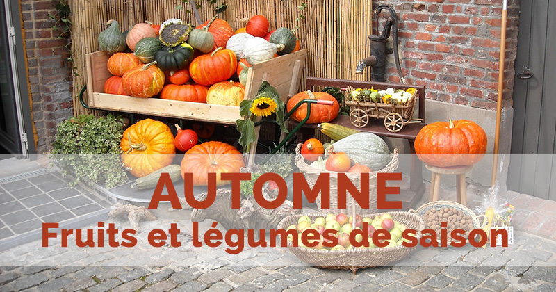 Calendrier des fruits et légumes d'automne : octobre, novembre et décembre